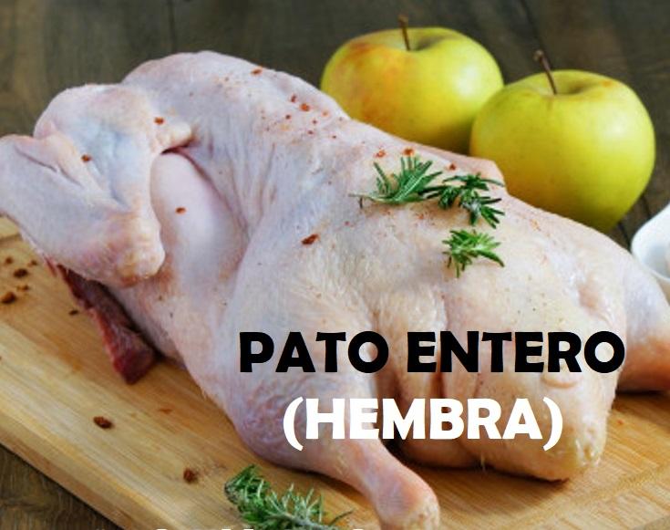 PATO ENTERO HEMBRA 2.2 Kg a 2.4 Kg  (MERCADO CORAZÓN DE JESÚS - CHOSICA)