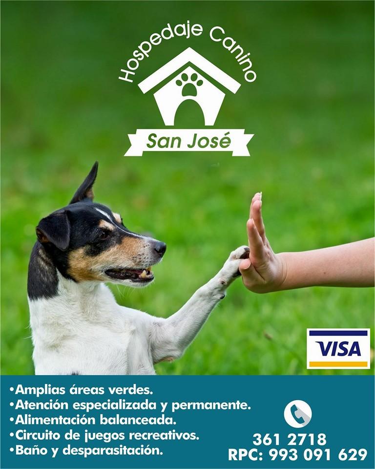 Hospedaje Canino